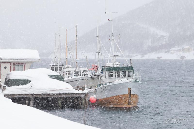 bateaux-001